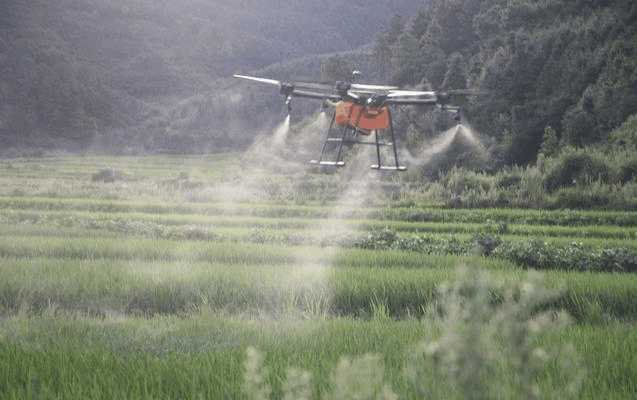 Agricultural drone sprayer VS artificial spraying, absolutely change